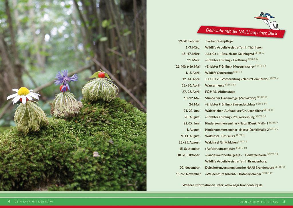 NAJU-Jahresplan3.jpg